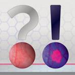 Advanta-Portfilio-2015-Web-CYS-Crop